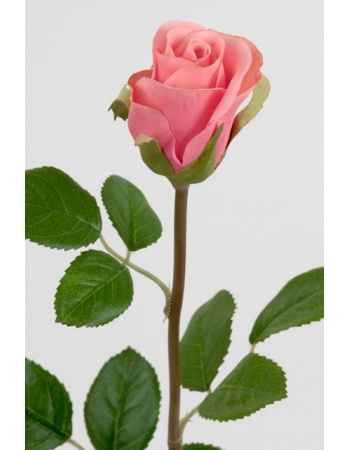 Rose 50 cm. rosa 2889-20