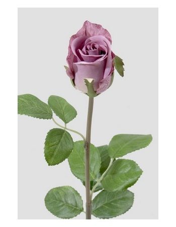 Rose 50 cm. lilla 2889-40