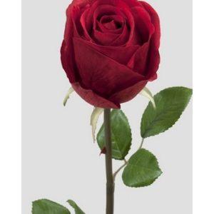 Rose stort hoved stilk 50 cm. vinrød 9603-85
