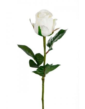 Rose stort hoved stilk 50 cm. Hvid 9603-10