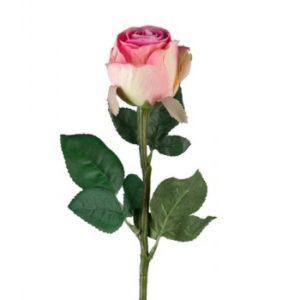 Rose stort hoved stilk 50 cm. rosa 9603-20