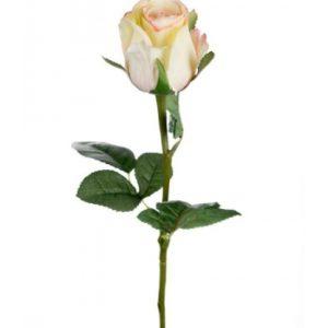 Rose stort hoved stilk 50 cm. Gul - rosa 9603-51