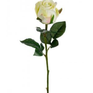 Rose stort hoved stilk 50 cm. Lime 9603-90